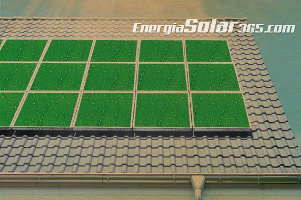 2015, un buen año para el sector fotovoltaico, 2016 será mejor